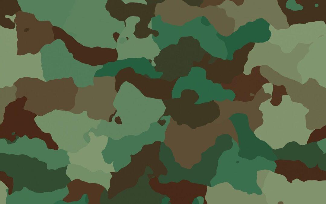 Covering camouflage : Comment et pourquoi les constructeurs automobiles s'efforcent de camoufler leurs voitures ?